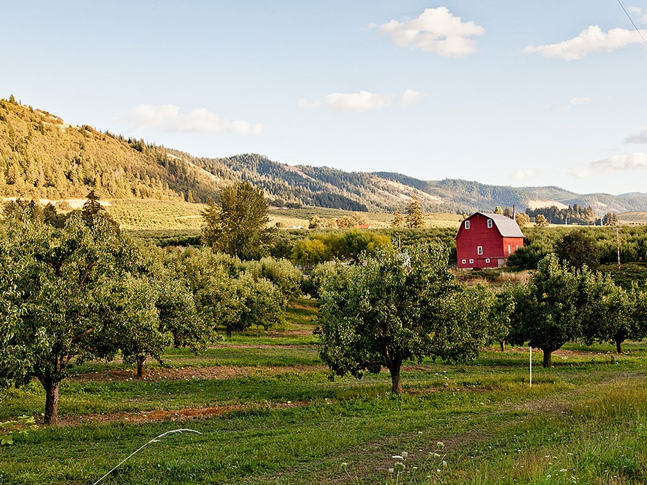 Known for its kite-boarding, the bucolic Hood River Valley, east of Portland, is becoming an agritourism destination.